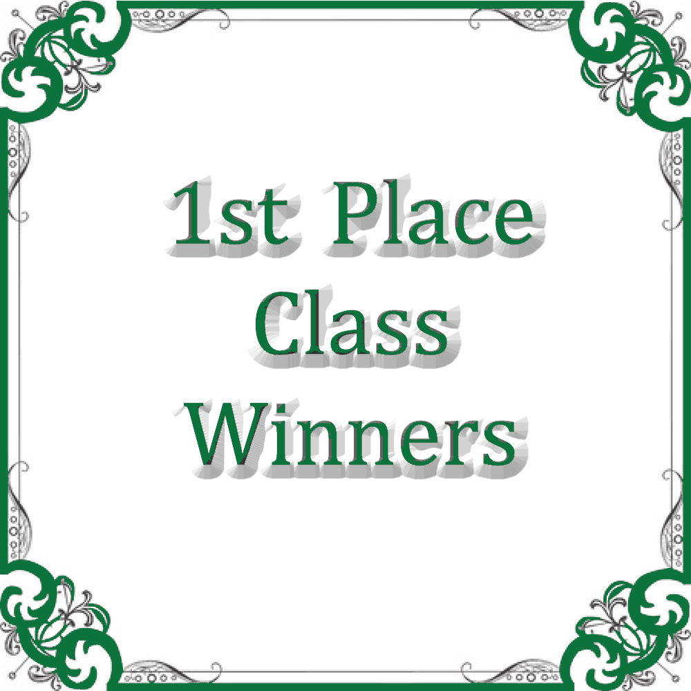 Conformation Class Winners 1st Place