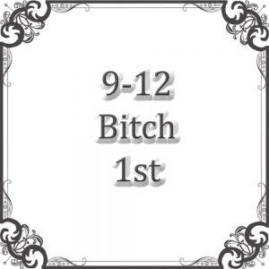 9-12 Bitch