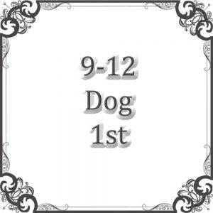 9-12 Dog