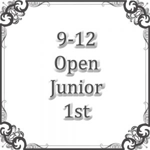 9-12 Open Junior