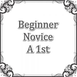 Beginners Novice A