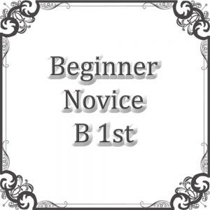 Beginners Novice B