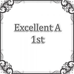 Excellent A