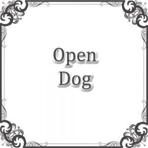 Open Dog