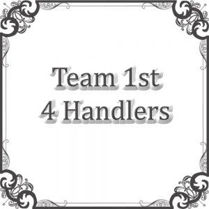 Team (4 Handlers)