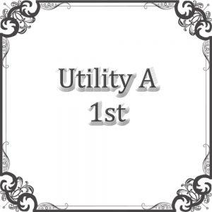 Utility A