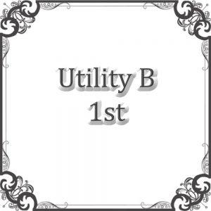 Utility B
